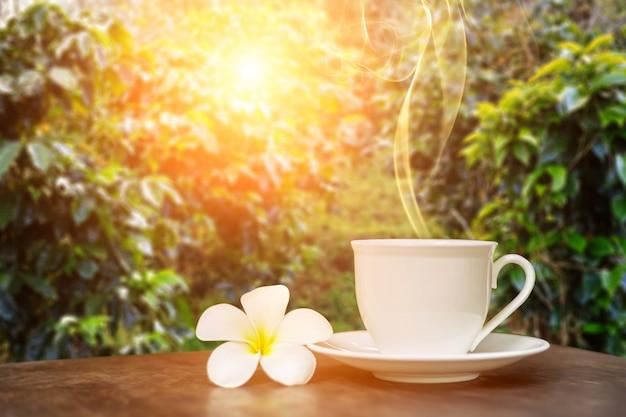 Warme kop koffie met witte bloem decor op tafel over de achtergrond van koffieplantages