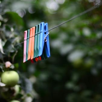 Wasknijpers op een touw opknoping buiten huis en appelboom