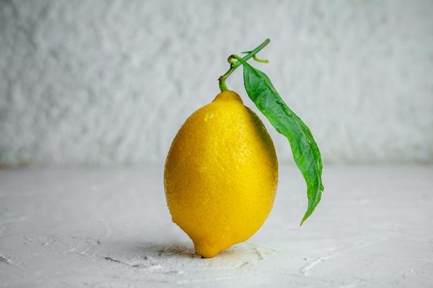 Wat citroen met zijn blad op witte geweven achtergrond, zijaanzicht.