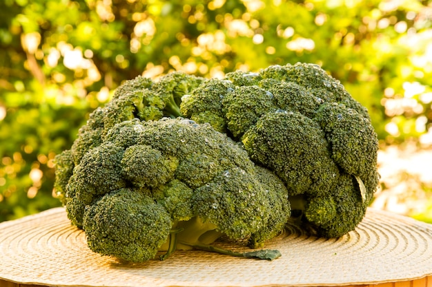 Wat groene brocolis over een houten oppervlak. verse groente