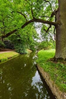 Water sloot kanaal op met gras begroeide weide in zomer stadspark