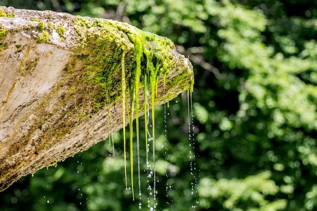 Water stroomt uit een stenen kom van een oude fontein