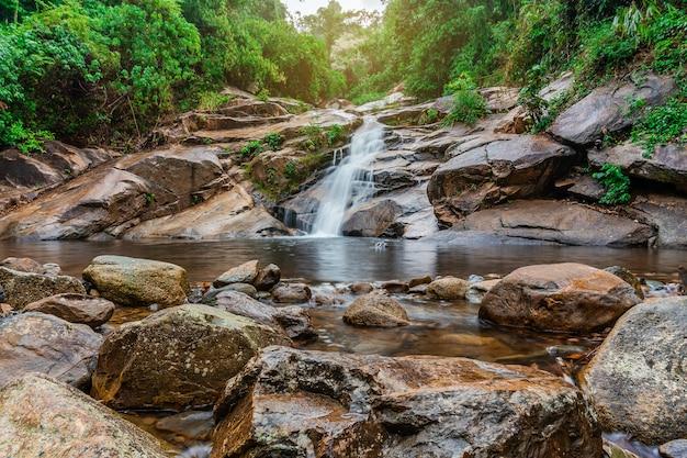 Waterdaling van bos met groene boomaard
