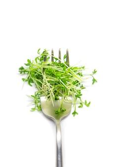 Waterkers microgreen op witte achtergrond isoleren. selectieve aandacht. natuur.