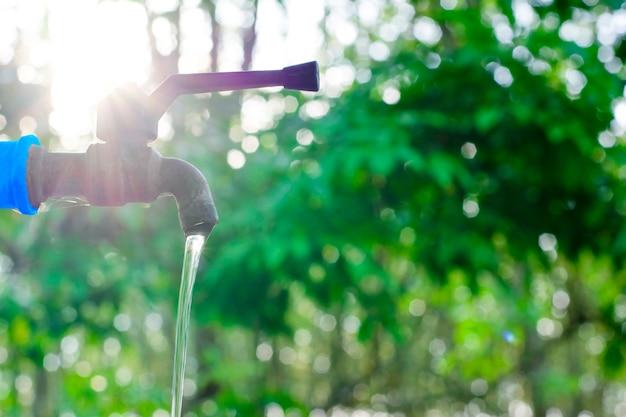Waterklep op groene aardachtergrond, sluit omhoog kraanklep met onduidelijk beeldachtergrond van groene boom