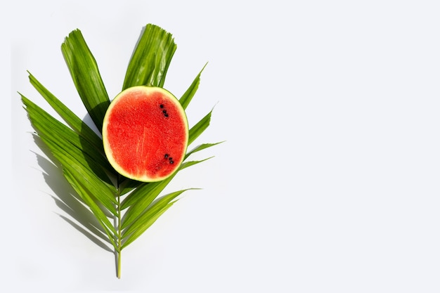 Watermeloen op tropische palmbladeren op witte ondergrond