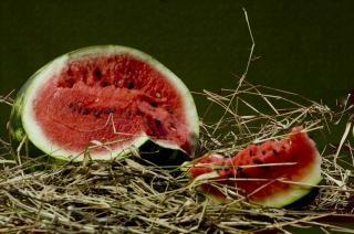 Watermeloen, sappige, fruit, vernield