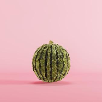 Watermeloen vacht apple op roze achtergrondkleur. minimale voedsel idee concept. 3d render.