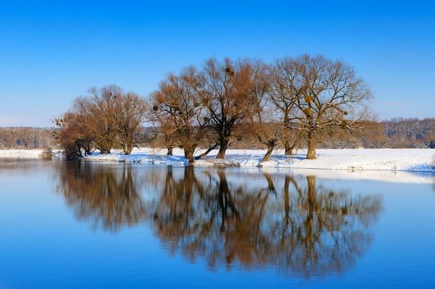 Wateroppervlak van de rivier in de winter met weerspiegeling van bomen. winter landschap