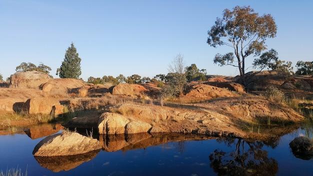 Waterpoel in rockpool in het terrick national park in australië