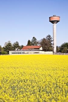 Watertoren in een veld met gele bloemen tijdens het lenteseizoen