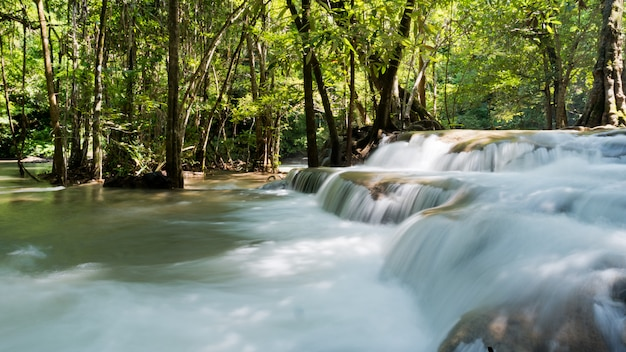 Waterval, bos achtergrond, landschap