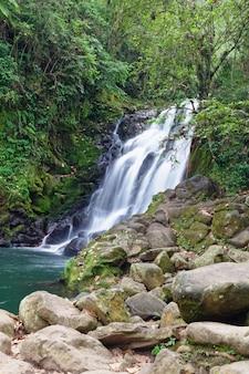 Waterval cascada de texolo in xico, mexico