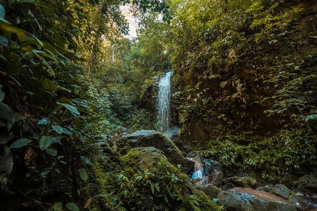 Waterval en de natuurlijke omgeving van het cerro azul meambar national park (panacam) aan het meer van yojoa. honduras