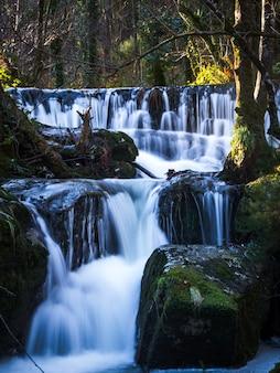 Waterval in de bos-rivier