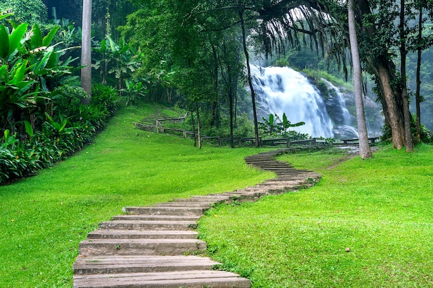 Waterval in de natuur, thailand.