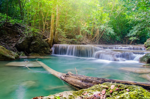 Waterval in diepe bossen