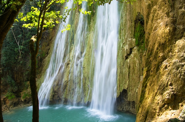 Waterval in diepgroen bos