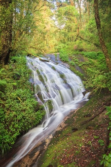 Waterval in heuvel altijdgroen bos van doi inthanon, chiang mai, thailand