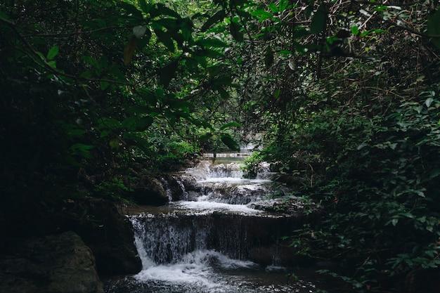 Waterval landschap