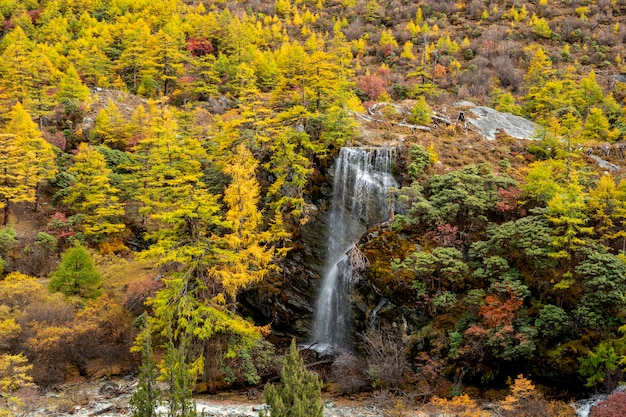 Waterval met autunmbladeren in yading-natuurreservaat, sichuan, china