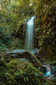 Waterval van het cerro azul meambar national park (panacam) op lake yojoa. honduras