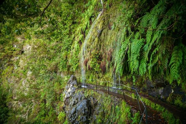 Watervallen die naar beneden stromen naar levada