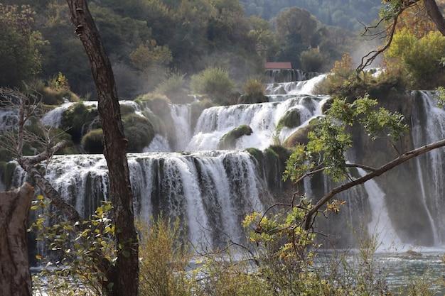 Watervallen in het bos overdag