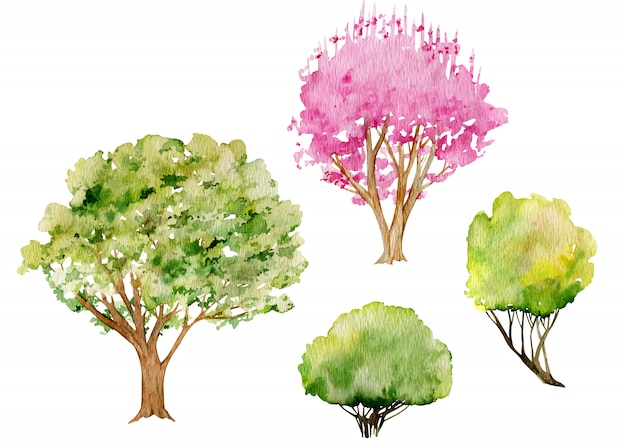 Waterverf clipart van bomen en struiken. boom van de kersen de roze bloesem in de vroege lente, verse groene en gele struiken.