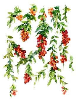 Waterverf het schilderen van bladeren en bloem,