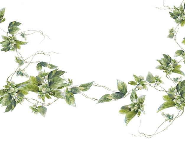 Waterverf het schilderen van bladerenillustratie op wit