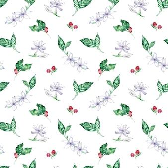 Waterverf naadloos patroon met koffiebloemen, bessen en bladeren.