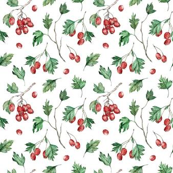 Waterverf naadloos patroon van hawberrystruik.