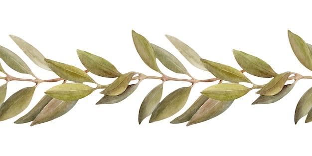 Waterverfillustratie van een grens met bladeren, vruchten en olijfolie. olie en aromatische kruiden