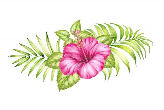 Waterverfillustratie van tropische hibickusbloem en palmbladen.