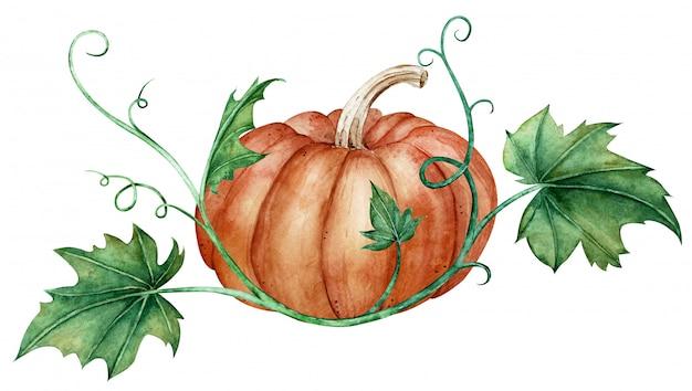 Waterverfsamenstelling van een oranje pompoen en groene bladeren. herfst illustratie.