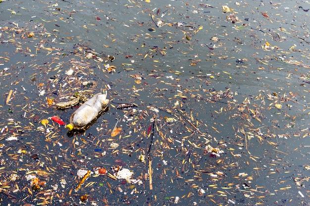 Watervervuiling door afval. vuil afvalwater. stedelijk afvalwater
