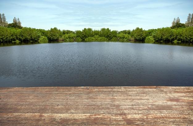 Watervijver van landschap van de meer het houten kust