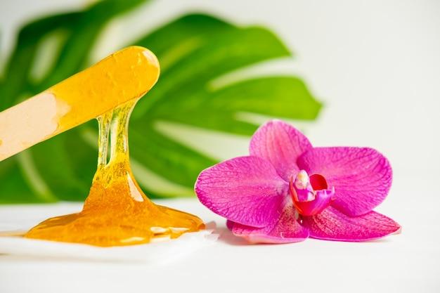 Wax honing en bloem