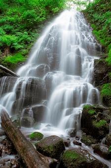Wazig beweging shot van externe waterval spatten in het bos