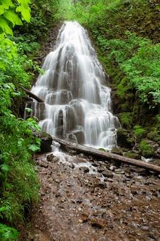 Wazig beweging shot van externe waterval spatten op rotsen in bos
