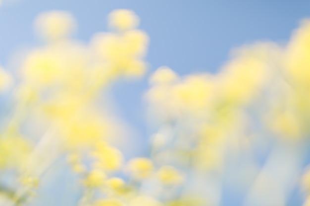 Wazig bloemen