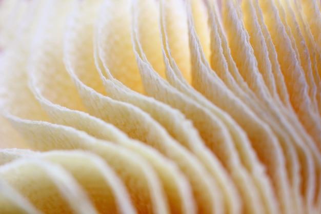 Wazig kleur achtergrond met getextureerde doorschijnende servetten