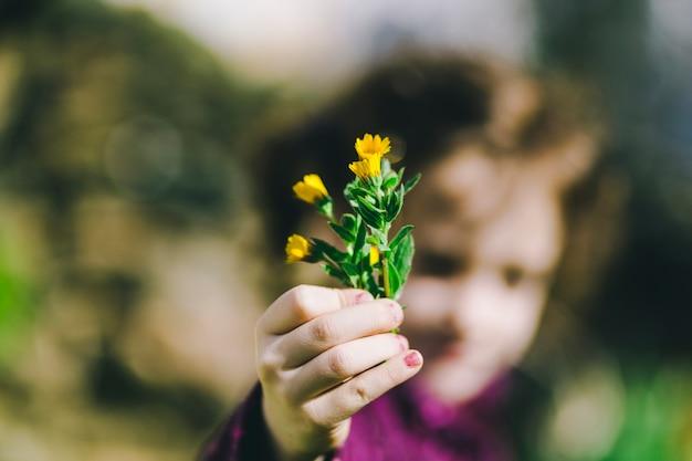 Wazig meisje dat wilde bloemen toont