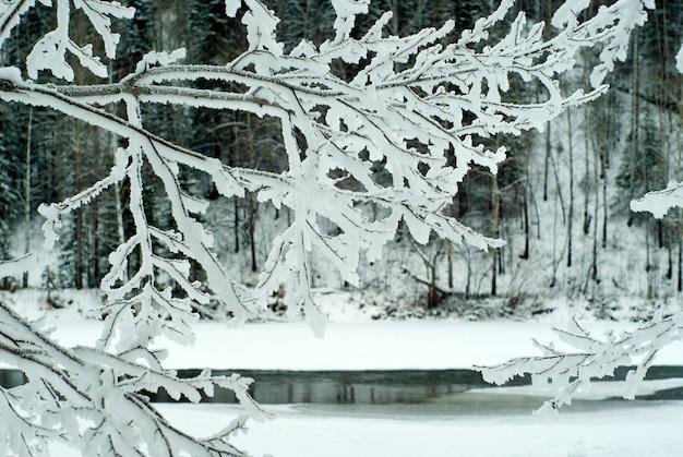 Wazig winterlandschap aan de oever van een bijna bevroren rivier zichtbaar door de ijzige takken