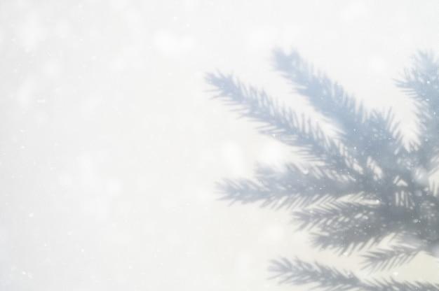 Wazige schaduw van de vertakking van de beslissingsstructuur op een witte grijze achtergrond
