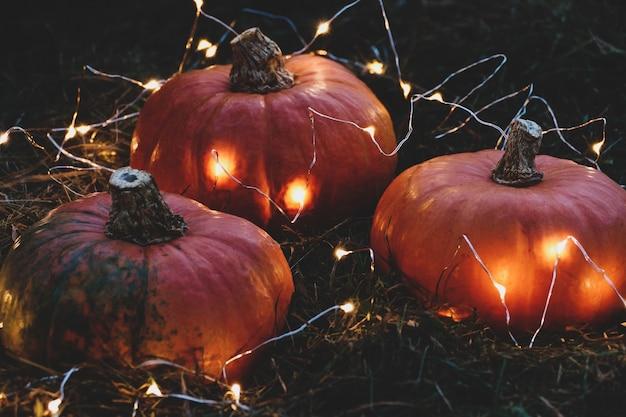 Wazige vakantieachtergrond met pompoenen en lichten, halloween- en thanksgiving-feestdecoraties