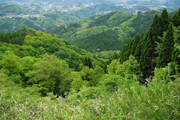 Weelderig groen bergpanorama en stadsmening van een afstand