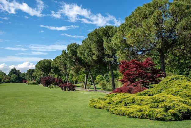 Weelderig groen lentepark met met bomen omzoomde looppaden en sierheesters met kleurrijk gebladerte grenzend aan een netjes onderhouden gazon in een schilderachtig landschap onder een zonnige blauwe lucht