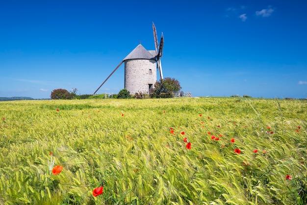 Weergave van windmolen en tarweveld, frankrijk, europa.